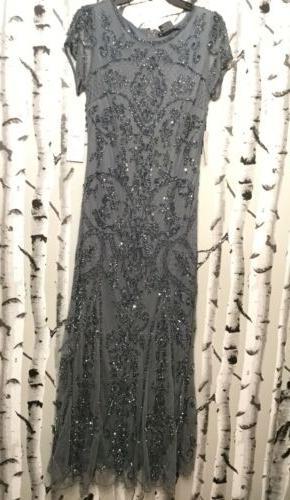 Pisarro Mesh Gown: Size 8P: